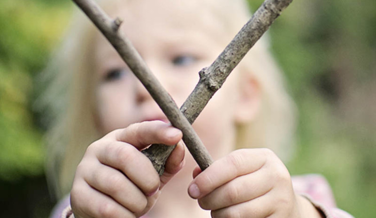 Learning from Nature: Make a Stick Alphabet