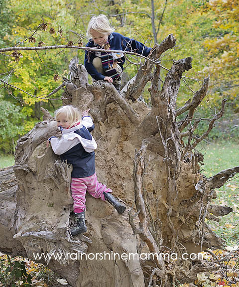 Kids climbing a tree stump