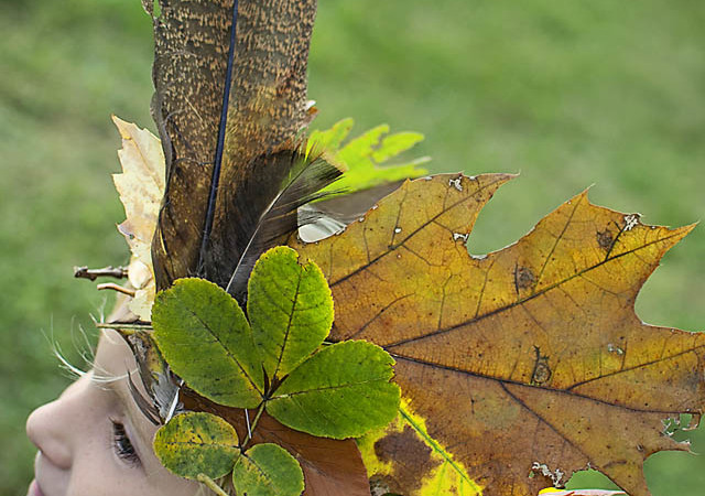Make a Unique Fall Leaf Crown