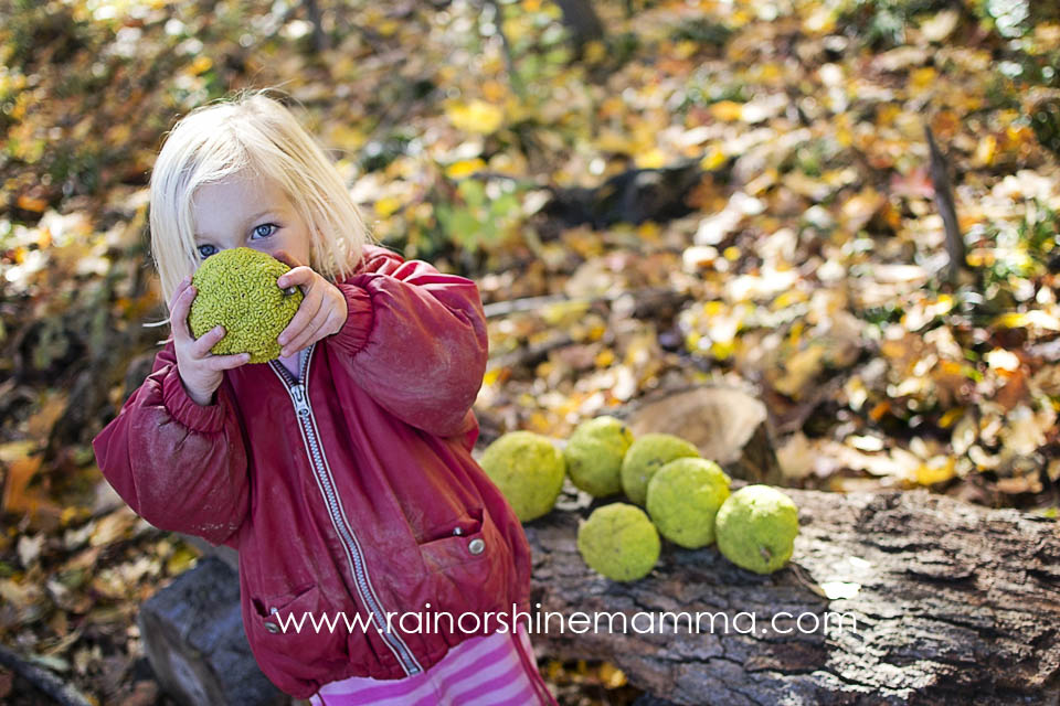 Collecting and smelling crab apples is a fun outdoor activity for young children.