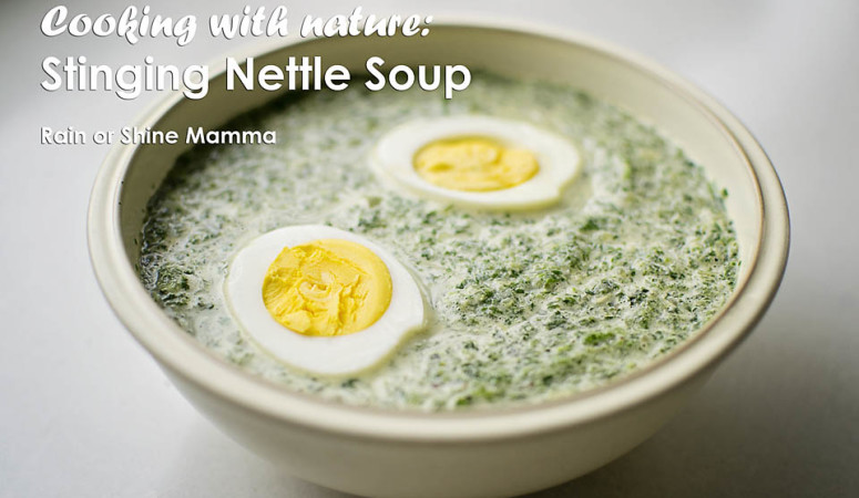 Cooking with Nature: Stinging Nettle Soup