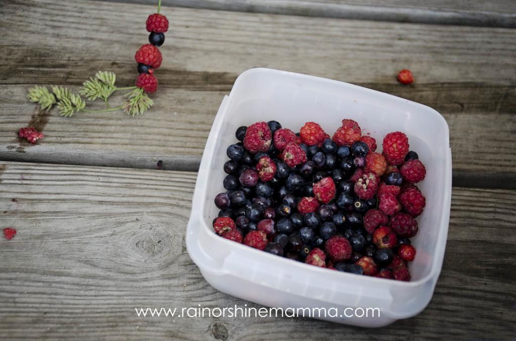 Simple Summertime Adventures: Berry Kebabs. Rain or Shine Mamma