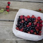 Sweet Summertime Adventures: Berries on a Straw. Rain or Shine Mamma