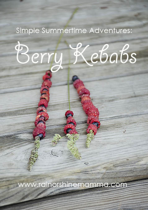 Simple Summertime Adventures: Berry Kebabs. Rain or Shine Mamma