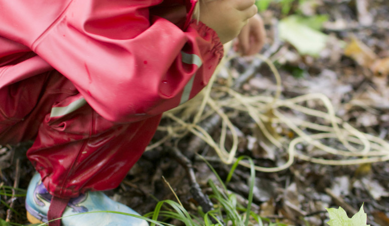 DIY Forest School II: Small World Exploration