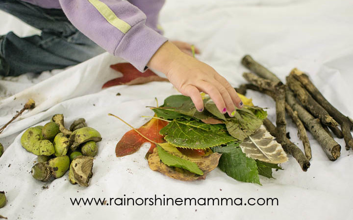 Sorting, Comparing and Categorizing – Forest-School Inspired Math Activities for Preschoolers