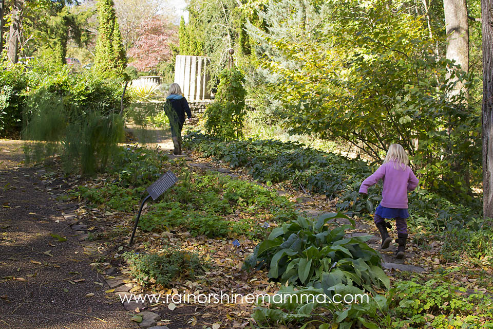 Outdoor Play Party: Exploring Nooks and Crannies at the Cheekwood Botanical Garden
