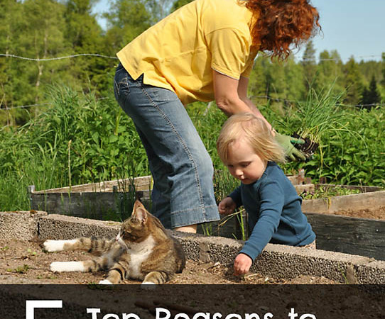 The Top 5 Reasons to Garden with Kids (Even If You Have a Black Thumb)