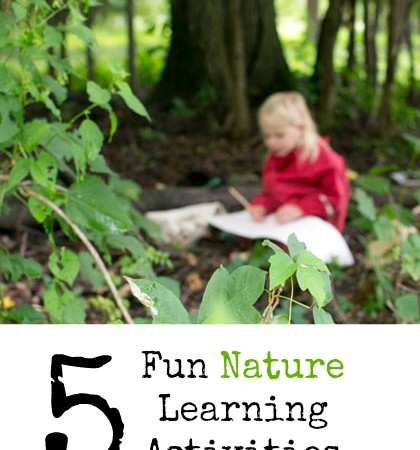 Five Fun Nature Learning Activities