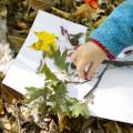 Nature Tree Craft for Kids. Rain or Shine Mamma