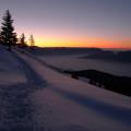 How to Celebrate the Winter Solstice. Rain or Shine Mamma