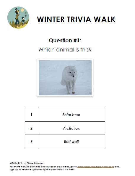 Nature Trivia Walk for Winter - Sample Question