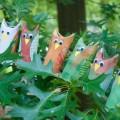Nature Stories for Kids. Rain or Shine Mamma