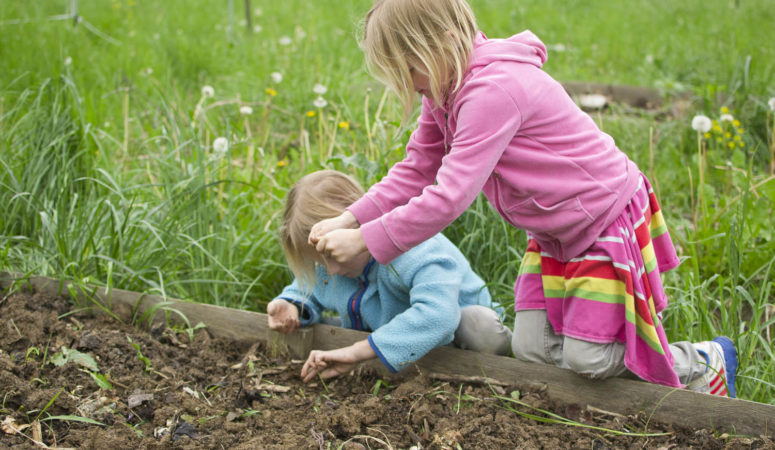 5 Common Mistakes When Gardening with Kids (And How to Fix Them)