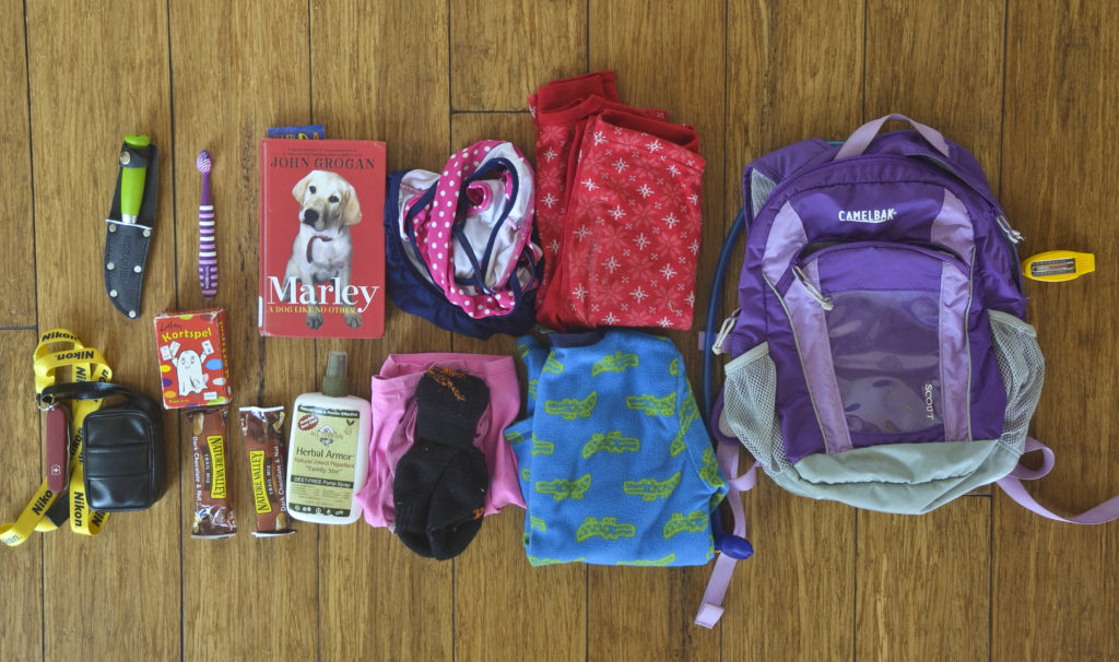 e5059e850e43 What to Bring When You Go Solo Backpacking with Kids: A Complete ...