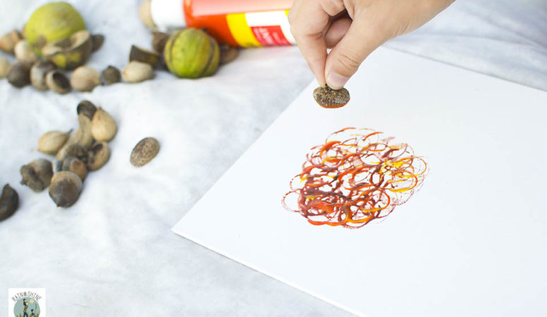 Creating Process Art with Tree Nuts