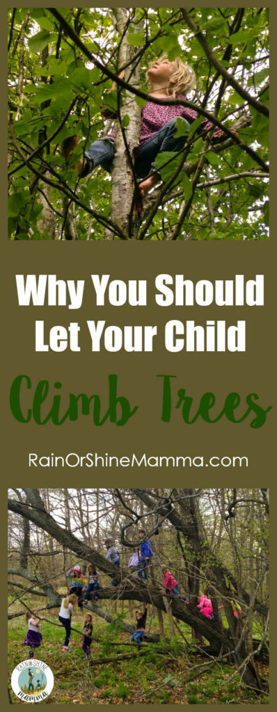 Parents - Stop Worrying and Let Your Child Climb Trees!