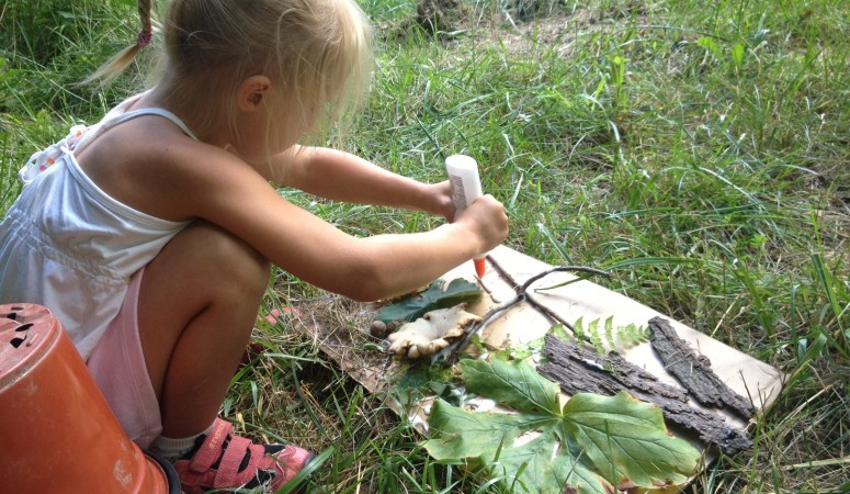 Make a Nature Collage