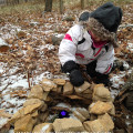 Nature-Themed Christmas Traditions: Building a Gnome House