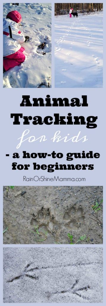 Animal Tracking with Children: A Beginner's Guide. Wildlife tracking is one of our favorite outdoor activities for kids in the winter! These tips and ideas will help you get started. Rain or Shine Mamma
