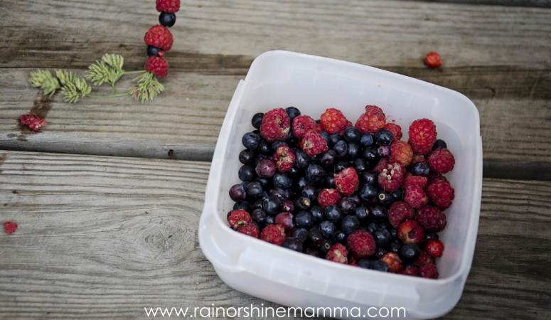 Simple Summertime Adventures: Berry Kebabs