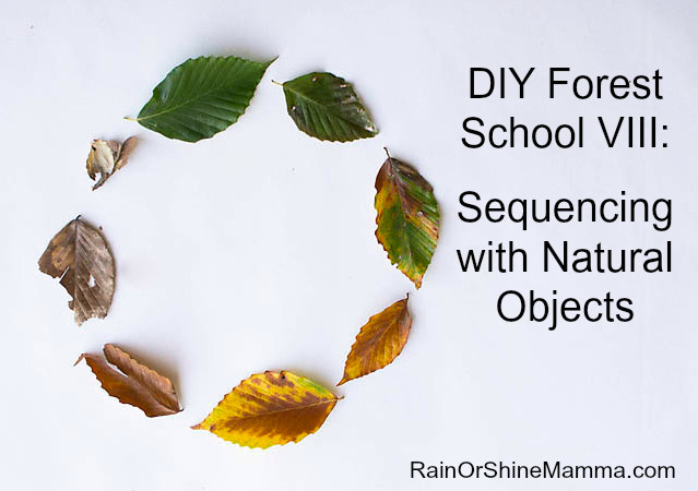 DIY Forest School VIII: Sequencing with Natural Objects