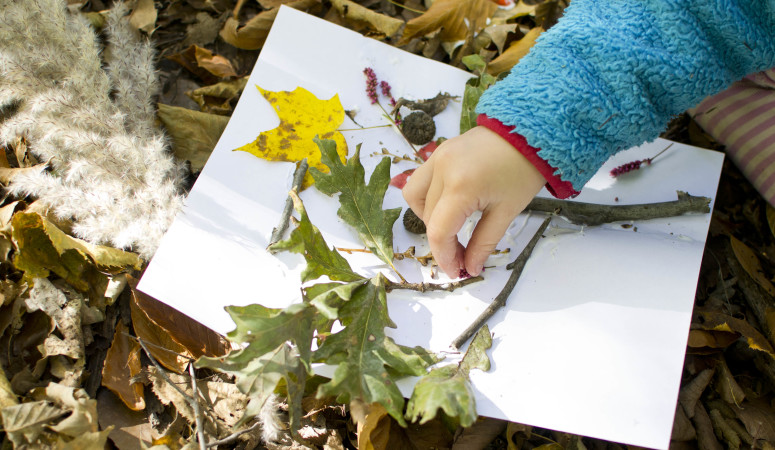 Fun Nature Tree Craft for Kids