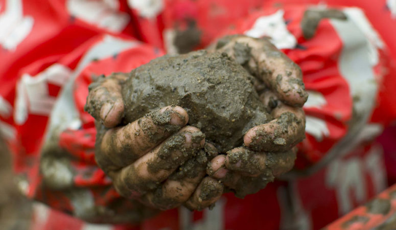 Cleanliness and Kids: Should You Let Them Eat Dirt?