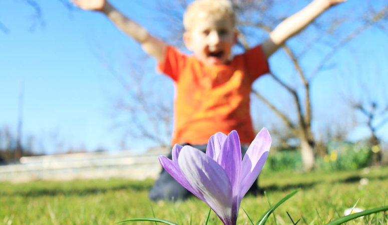 How to Celebrate the Spring Equinox