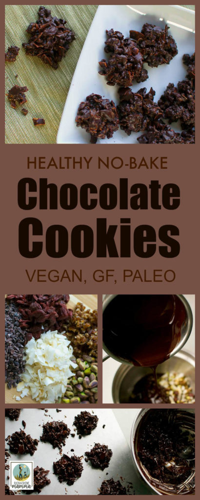 Healthy No-Bake Chocolate Cookies (Vegan, GF, Paleo). These chocolate treats are chock full of dried fruits, nuts and other health-boosting ingredients. Naturally sweetened and refined sugar free. A perfect snack for all your outdoor adventure (and slightly more indulgent than the ol' trail mix!). From Rain or Shine Mamma. trail mix.
