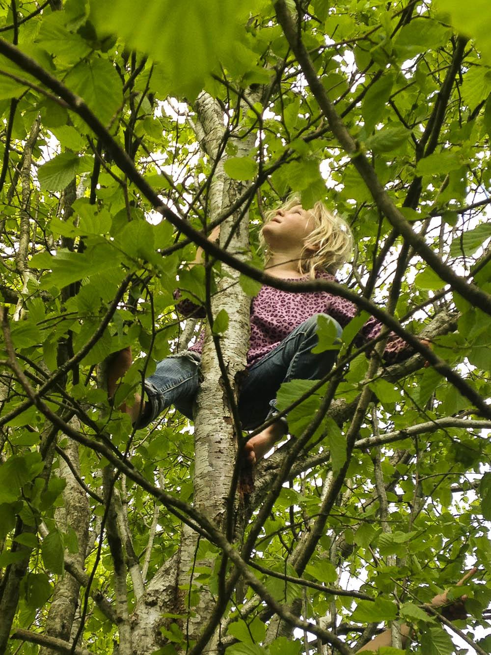 Why We Must Protect and Nurture Our Children's Sense of Wonder. Rain or Shine Mamma. #senseofwonder #nature #friluftsliv