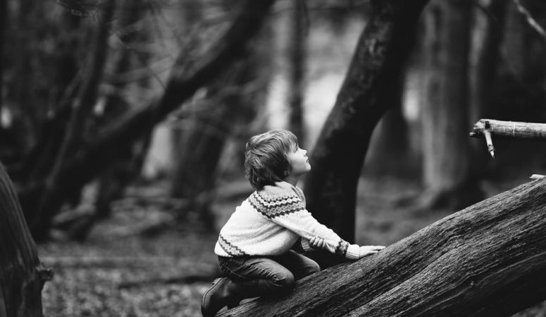 9 Safety Tips for Kids Climbing Trees